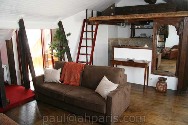 Ah Paris vacation apartment 119 - salon2