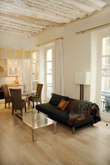Ah Paris vacation apartment 321 - salon2