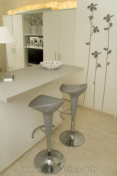 Ah Paris vacation apartment 372 - cuisine3