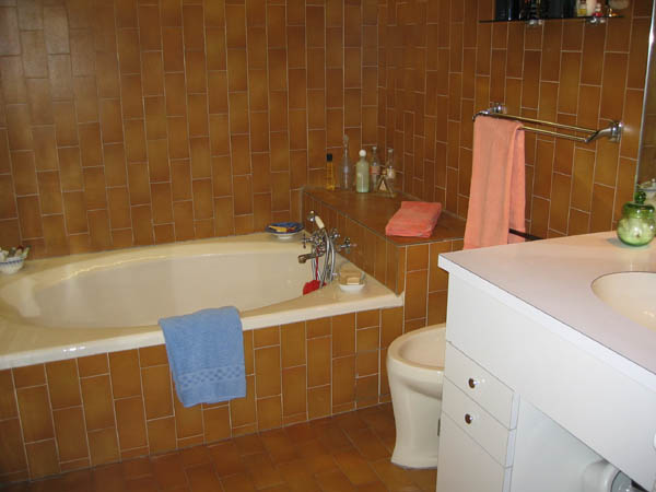 Ah Paris vacation apartment 82 - sdb
