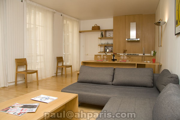 Ah Paris vacation apartment 84 - salon2