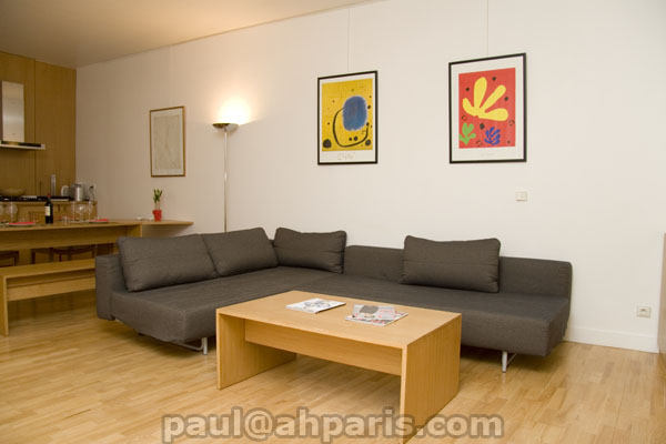 Ah Paris vacation apartment 84 - salon6